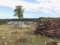 Foto 1: Lake Grenshült